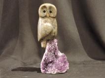 Owl Be Around