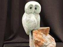 Owl Ways Watching