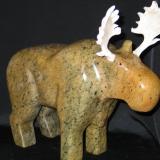 bruce_tne_moose